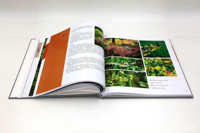 园林植物画册