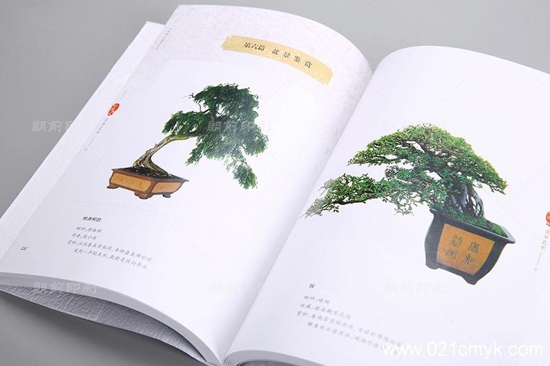 盆景艺术画册