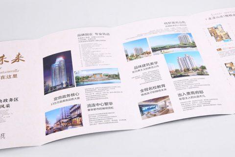 龙溪山庄户型图折页