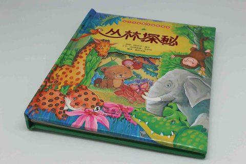 丛林探秘 方脊-儿童硬壳精装画册