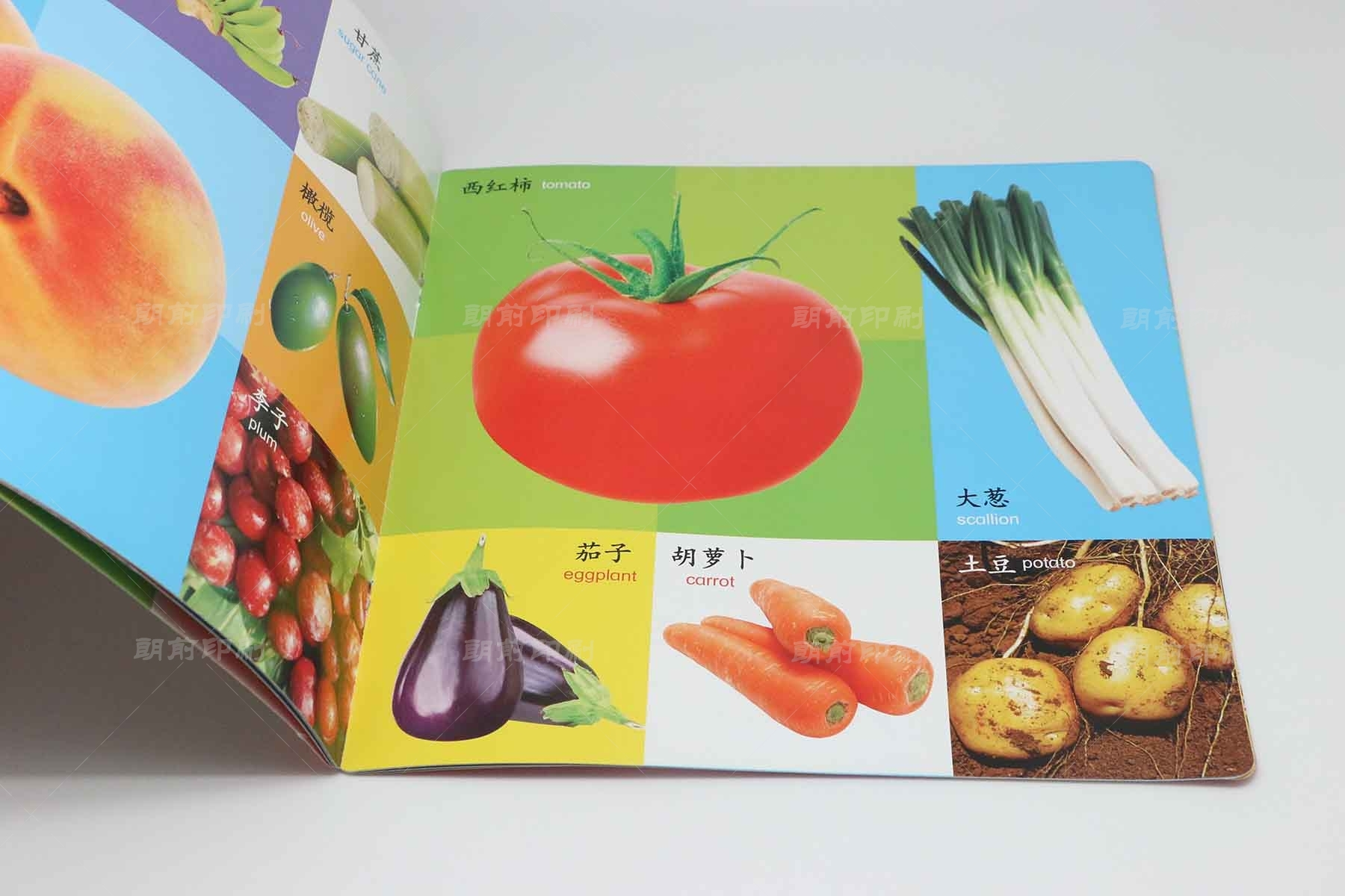 识果蔬 骑钉儿童读物印刷