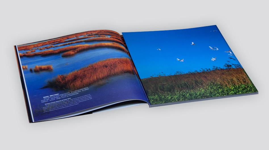 上海印刷厂曹妃甸专题摄影画册印刷