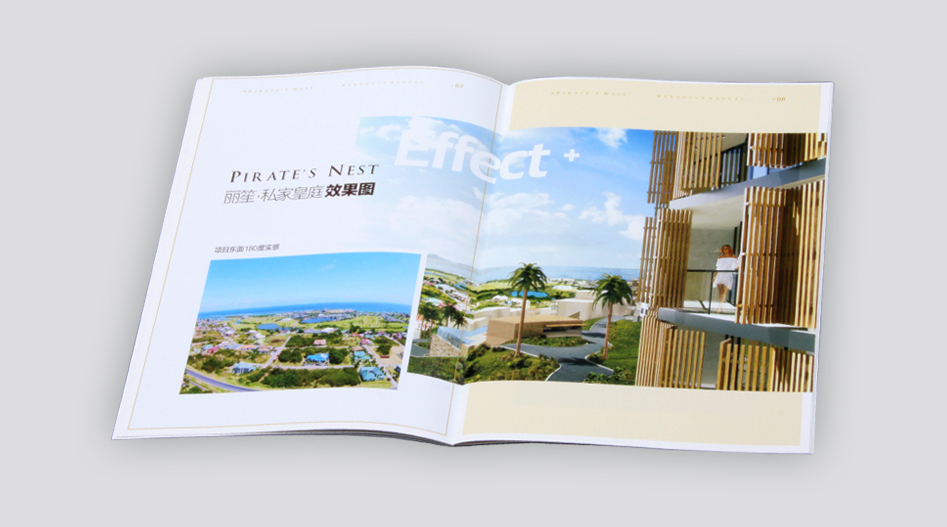 印刷厂-私家皇庭楼书印刷